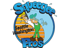 Squeegee Pros Solar Cleaning