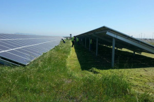 Blog_Port_of_Oakland_Solar_Clearing_03