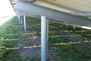 Blog_Port_of_Oakland_Solar_Clearing_05