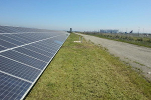 Blog_Port_of_Oakland_Solar_Clearing_06
